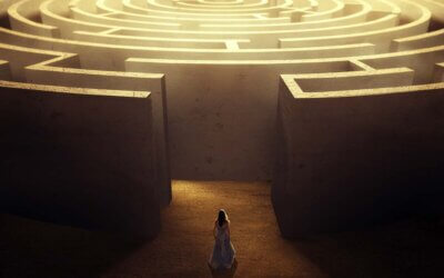 """Getting through the maze – the """"how to"""" guide for Regulation 19 representations"""